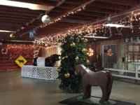Holiday in the Barn
