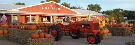 Tire Patch Cost >> 2016 Wichita Pumpkin Patches and Corn Mazes