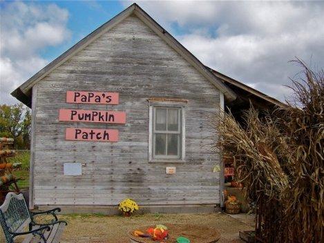 Papa�s Pumpkin Patch, Newton