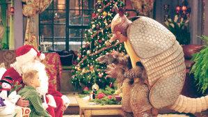 The Holiday Armadillo