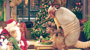 The Holiday Armadillo
