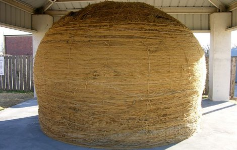 Worlds Largest Ball of Twin