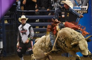 Professional Bull Riding at In