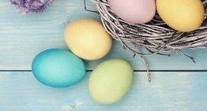 Bunny Blast and Easter Egg Hun
