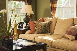 Freshen up Furniture with Baki