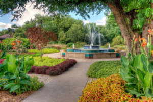 Visit Botanica