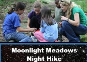 Moonlight meadow Night Hike at