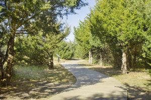 Take a walk at the Great Plain