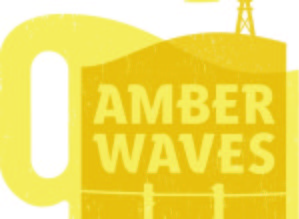 AmberFest 2016 at Lawrence Dum