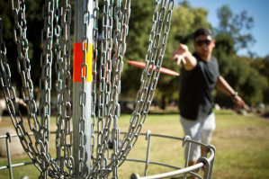 Disc Golf, Anyone?