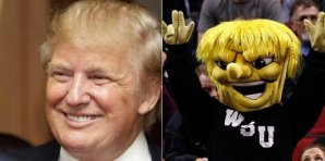 Twinning with Trump: WuShock
