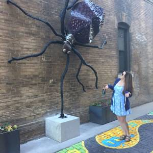 Gallery Alley Spider