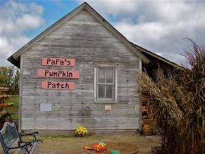 Papa's Pumpkin Patch, Newton