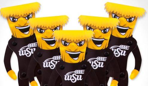 5 Ways to Show Your Shocker Pride