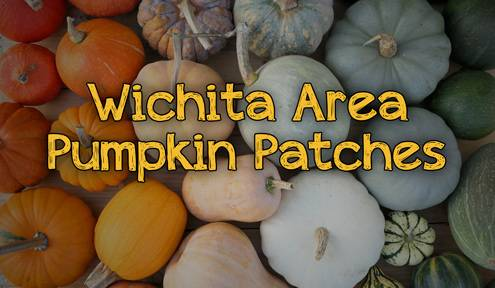 2019 Wichita Area Pumpkin Patches and Corn Mazes
