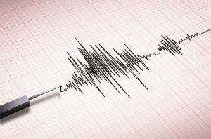 Minor Earthquake Damage Reported