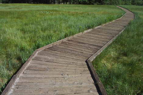 Wichita to Open New Wetlands Park